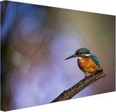 IJsvogel  Canvas 30x20 cm - klein - Foto print op Canvas schilderij (Wanddecoratie woonkamer / slaapkamer)