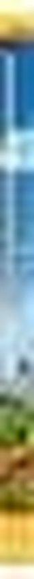sera LED X-Change Tube daylight sunrise1120-1200mm1 st (21 W)