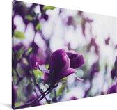 Seringenbloemen in de natuur Canvas 30x20 cm - klein - Foto print op Canvas schilderij (Wanddecoratie woonkamer / slaapkamer)