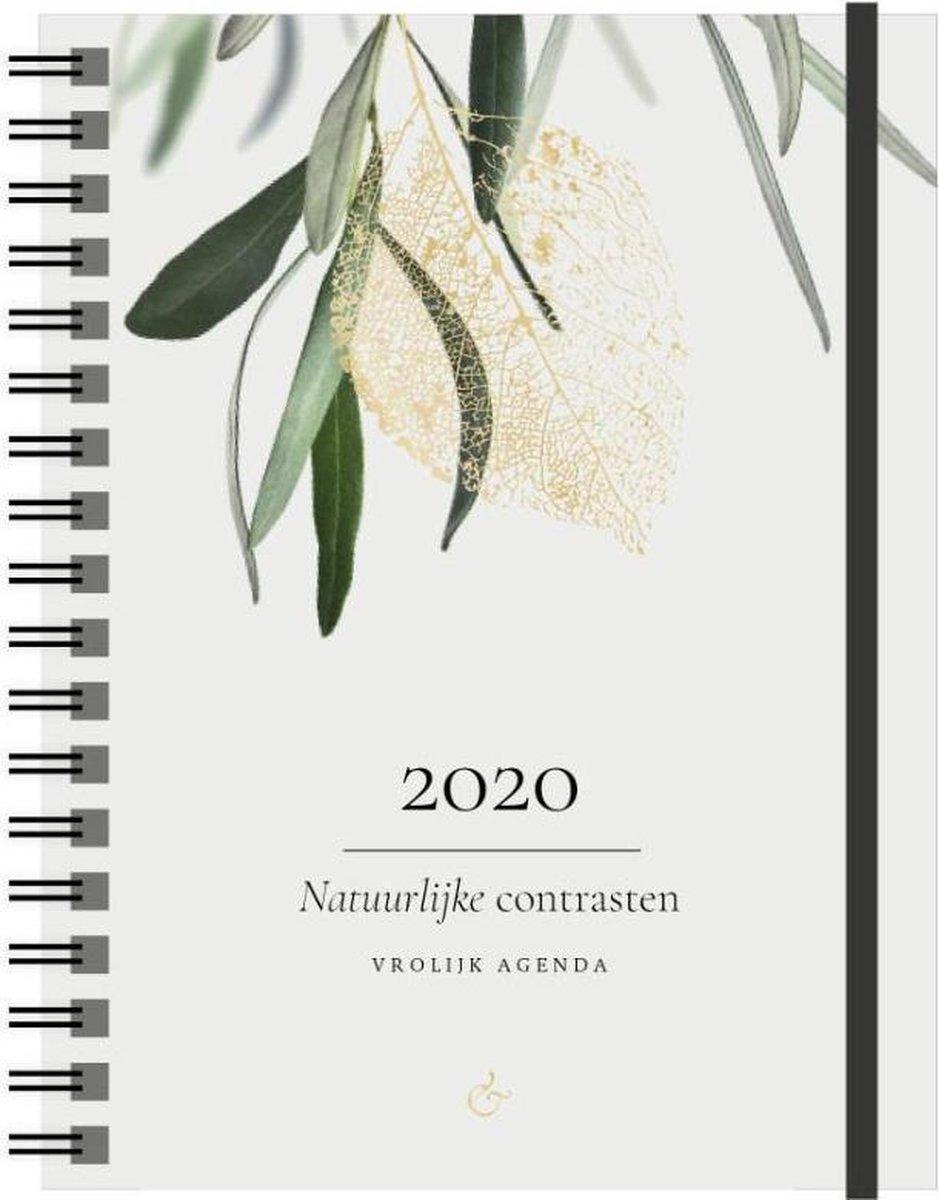 Vrolijk Agenda 2020 groot