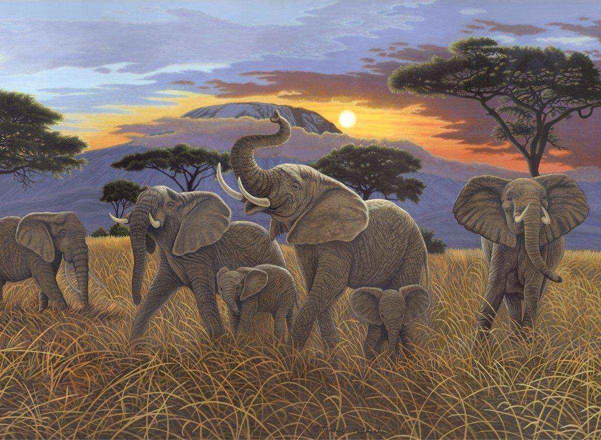 Schilderen op nummer - Paint by numbers - Dieren - Olifanten 28,6x39cm - Schilderen op nummer volwassenen - Paint by numbers volwassenen