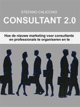 Consultant 2.0