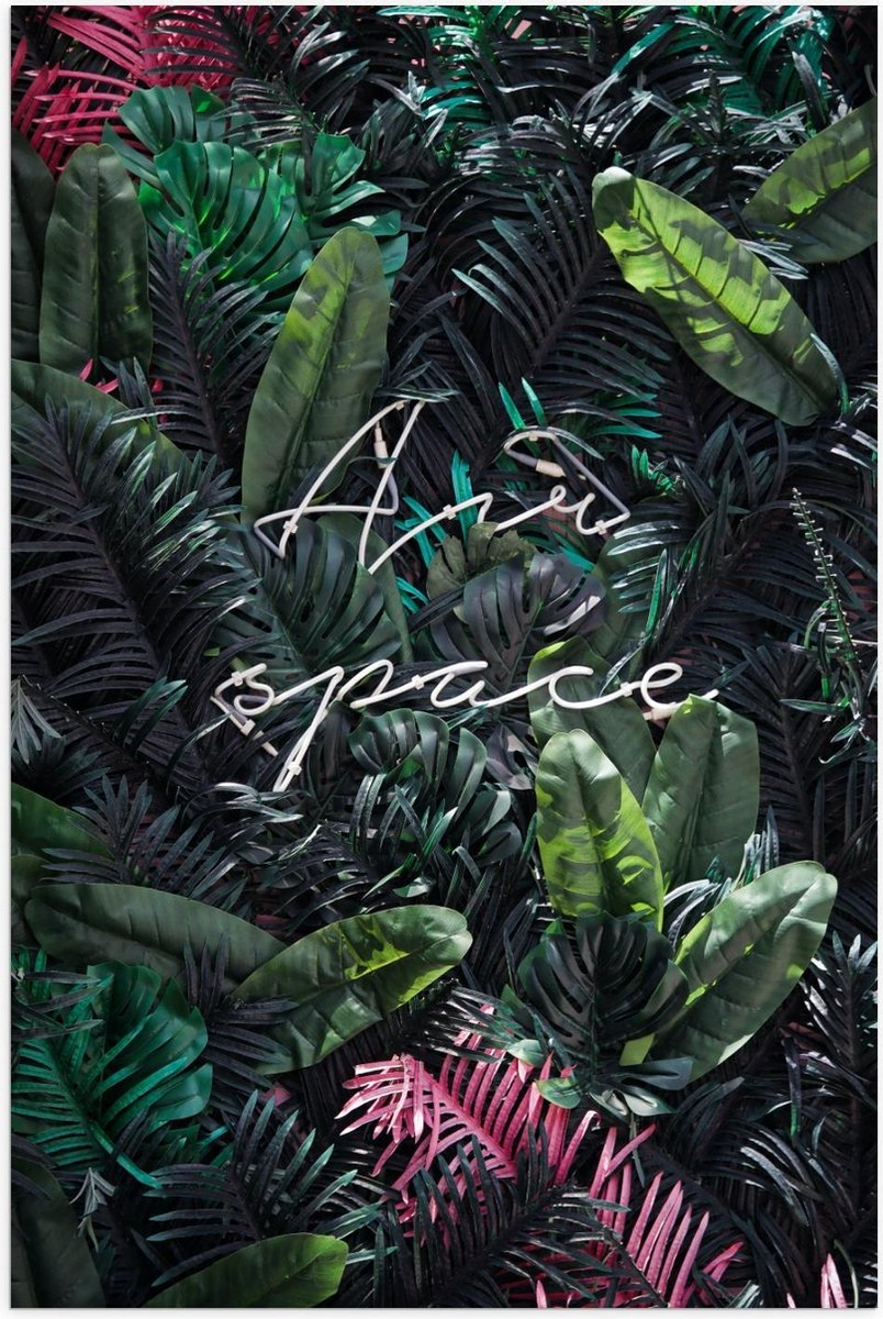 Poster   ''Air Space'' Palmbladeren - 60x90cm Foto op Posterpapier