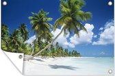 Een tropisch strand op de Dominicaanse Republiek Tuinposter 120x80 cm - Tuindoek / Buitencanvas / Schilderijen voor buiten (tuin decoratie) / Zee en Strand