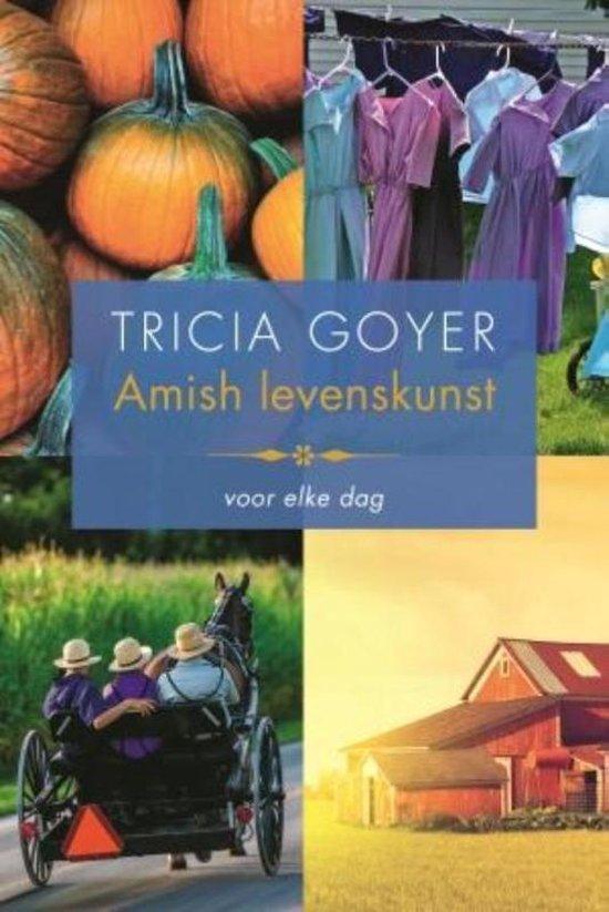 Amish levenskunst - Tricia Goyer |