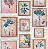 Kids@Home | tropische fotolijstjes | roze, goud | behangpapier 0,53x10m