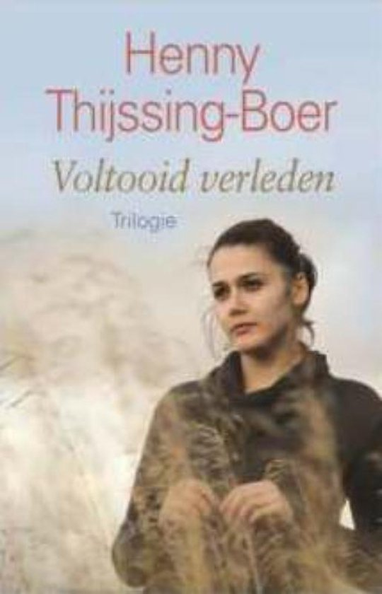 Voltooid verleden - Henny Thijssing-Boer pdf epub