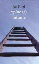 Spinoza's intuitie