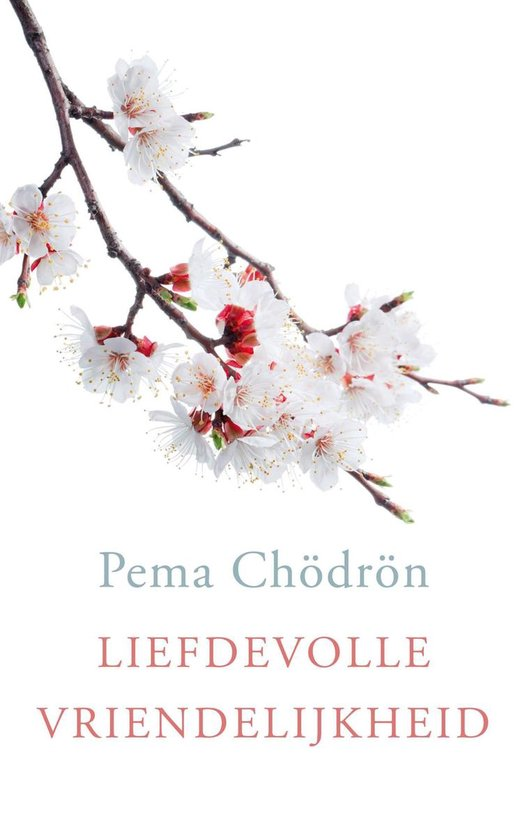 Liefdevolle vriendelijkheid - Pema Chodron |