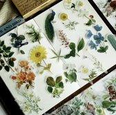 56 Vintage Flora & Fauna Vellum Stickers - Meer Leuks