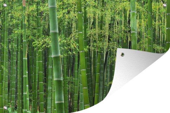 Bol Com Tuinposter Bamboe Bamboebos 180x120 Cm Tuindoek Buitencanvas Schilderijen Voor