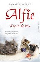 Alfie  -   Kat in de kou
