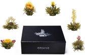 Creano Theebloemen Geschenkset in Magneetbox - 6 verschillende soorten