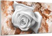 Glasschilderij Roos | Wit, Bruin | 120x70cm 1Luik | Foto print op Glas |  F003332