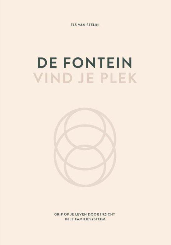 Boek cover De fontein, vind je plek van Els van Steijn (Hardcover)