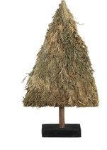 PTMD - Christmass grass natural dried - Tree M