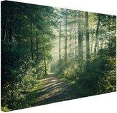 Zonnige oktobermorgen in het bos Canvas 120x80 cm - Foto print op Canvas schilderij (Wanddecoratie woonkamer / slaapkamer) / Wanddecoratie Canvas Schilderijen