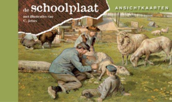 Afbeelding van Ansichtkaarten, de Schoolplaat  Het Volle Leven speelgoed