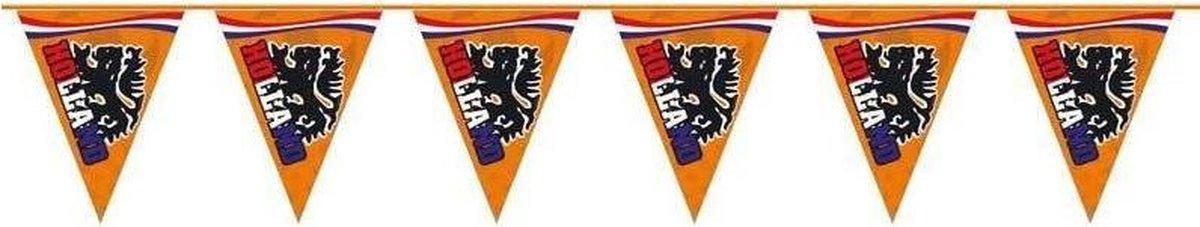 Vlaggenlijn Oranje Leeuw 15M
