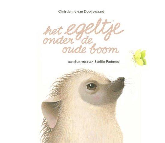 Het egeltje onder de oude boom - Christianne van Dooijewaard   Readingchampions.org.uk
