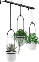 Umbra Bloempot Plantenhanger - Triflora plafond - metaal - koord