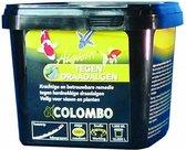 Colombo Anti draadalgpoeder Algisin - 1000 ml - poedervorm