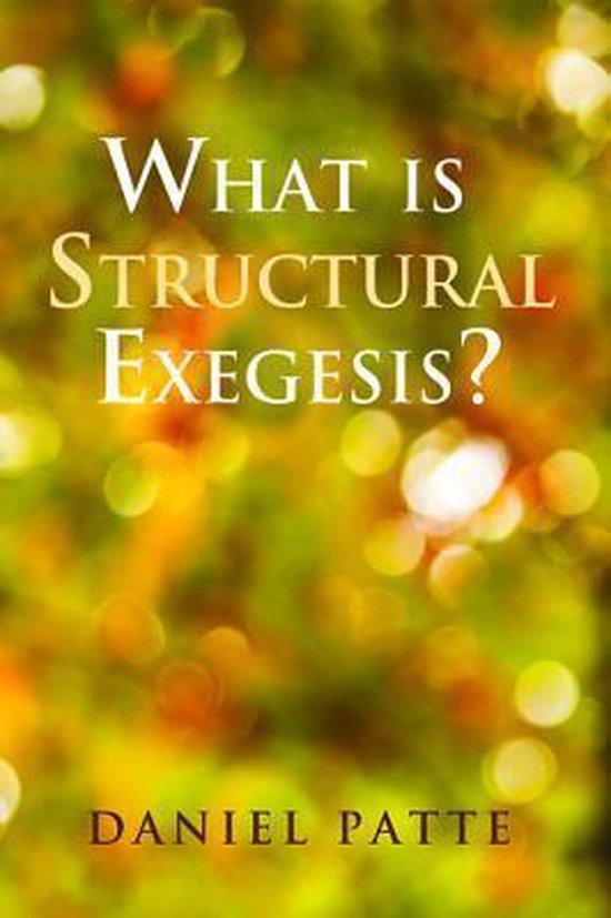 Boek cover What is Structural Exegesis? van Daniel Patte (Paperback)