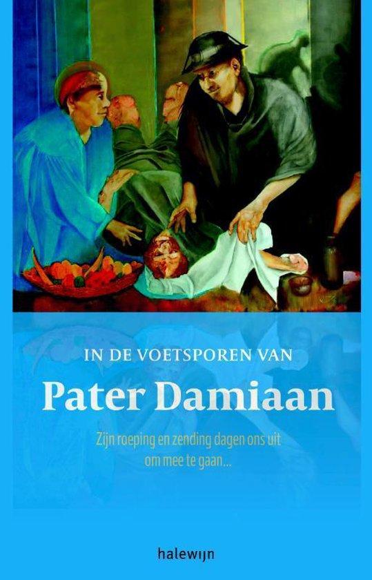In de voetsporen van pater Damiaan - Luc van Hilst pdf epub