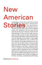 Omslag New American Stories