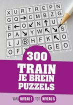 300 train je brein puzzels