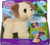FurReal Friends Pax, Mijn Pup Moet Nodig - Interac