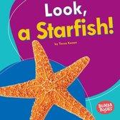 Look, a Starfish!
