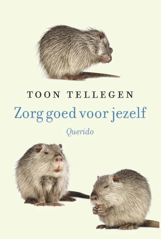 Boek cover Zorg goed voor jezelf van Toon Tellegen (Hardcover)