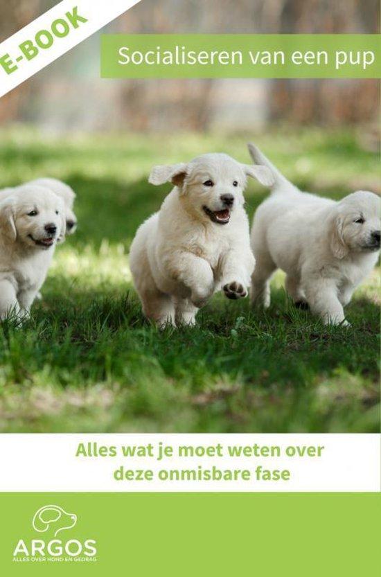 Socialiseren van een pup - Kenniscentrum Argos | Readingchampions.org.uk
