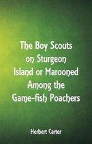 The Boy Scouts on Sturgeon Island
