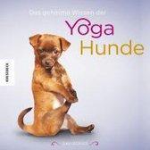 Omslag Das geheime Wissen der Yoga-Hunde