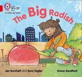 Collins Big Cat Phonics for Letters and Sounds - The Big Radish