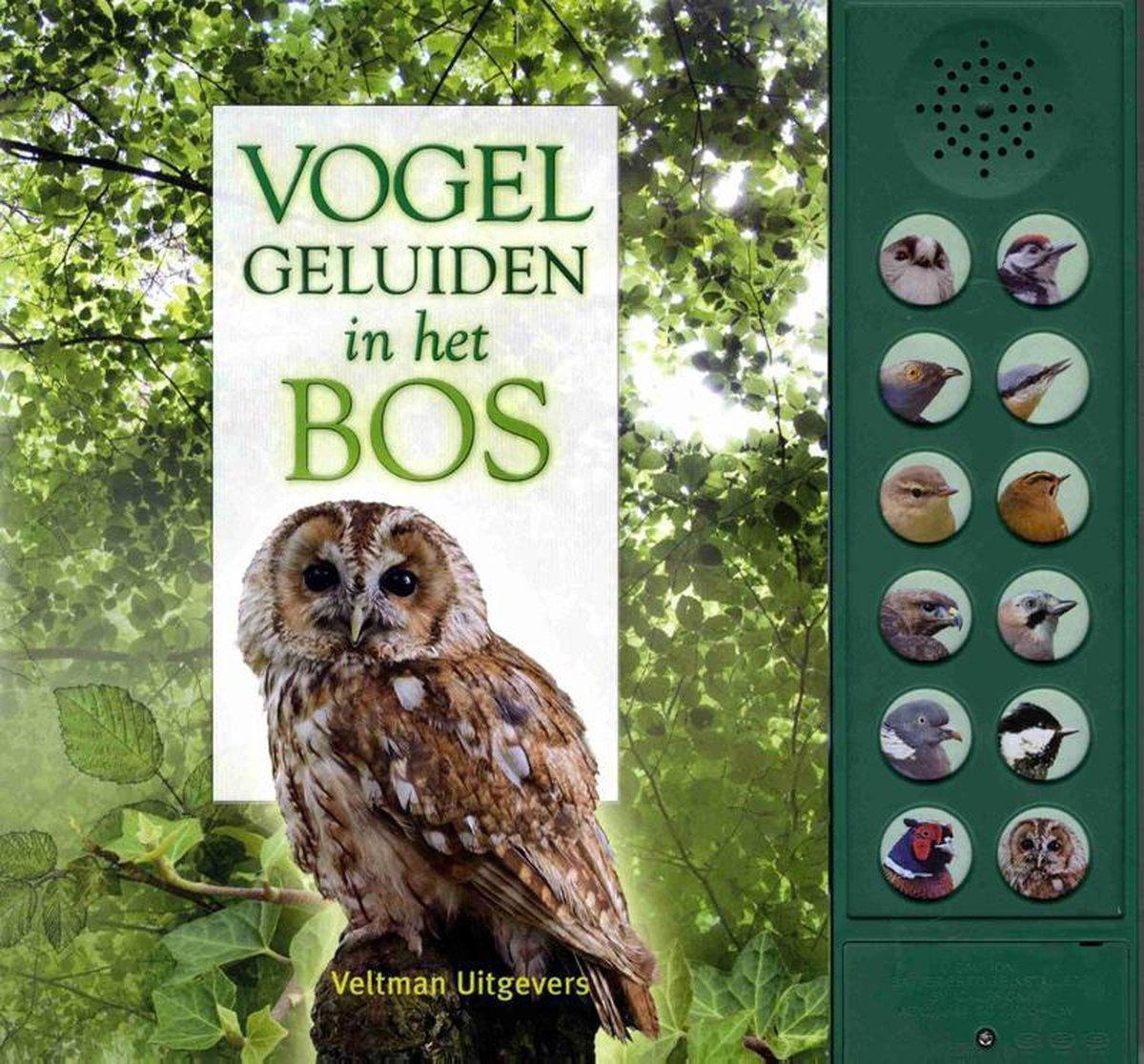 Vogelgeluiden in het bos - Andrea Pinnington