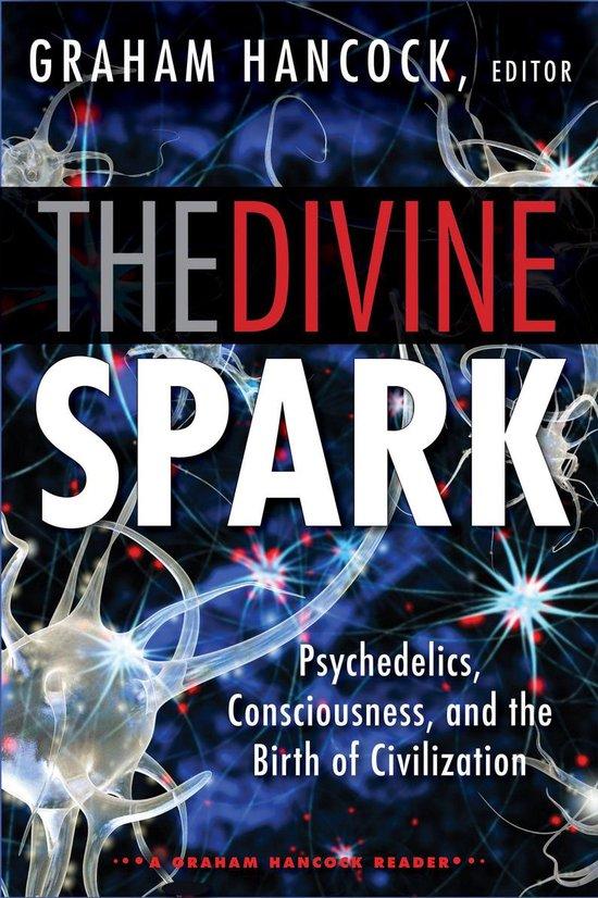 Boek cover The Divine Spark: A Graham Hancock Reader van Russell Brand (Onbekend)