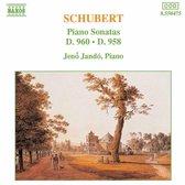 Schubert: Piano Son. D958&D960