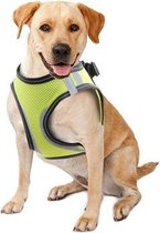 Doggy Safety Harness L.