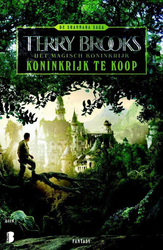 De Shannara saga 1 - Koninkrijk te koop - Terry Brooks |