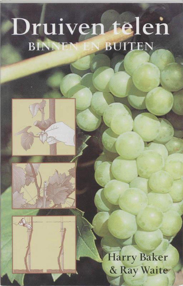 Druiven Telen