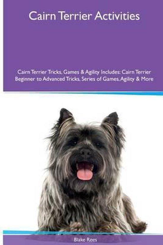 Cairn Terrier Activities Cairn Terrier Tricks, Games & Agility. Includes