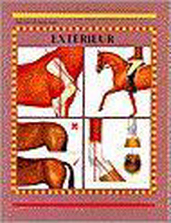 Exterieur - Pegotty Henriques   Fthsonline.com