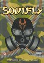 Soulfly - Song Remains Insane