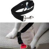 Auto Veiligheidsgordel - Hondengordel - 2.5 cm