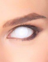 ZOELIBAT - Witte ogen contactlenzen voor volwassenen - Schmink > Lenzen
