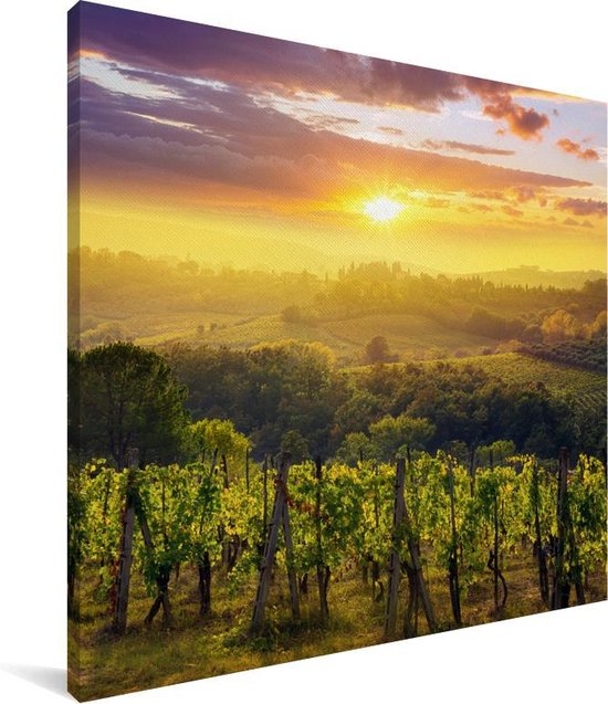 Druivenbomen op het platteland van het Italiaanse Toscane Canvas 90x90 cm - Foto print op Canvas schilderij (Wanddecoratie woonkamer / slaapkamer)