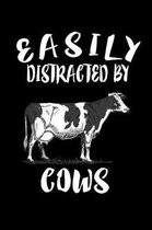 Easily Distracted By Cows